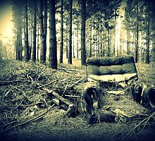 Forest Couch by cazempy