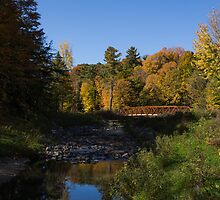 Rusty Little Bridge Complimenting the Fall Colors by Georgia Mizuleva