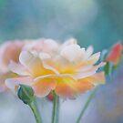 Essence of beauty I by Maria Ismanah Schulze-Vorberg