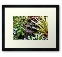 Living Water Framed Print
