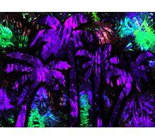Tropical Paradise Photographic Print