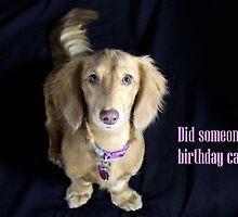 Did someone say birthday cake? by Sarah Guiton