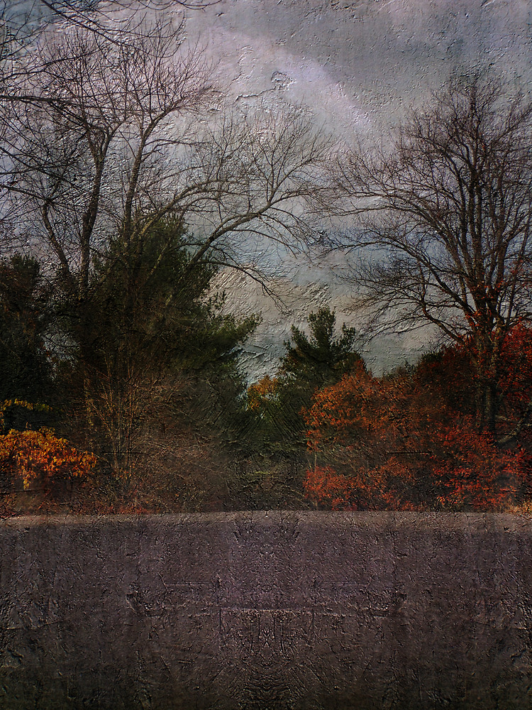 Illusions in Autumn by PineSinger