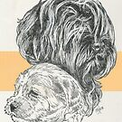 Labradoodle Father & Son by BarbBarcikKeith