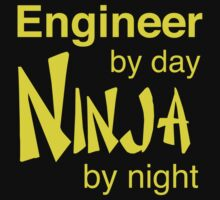 Engineer by day, ninja by night by careers