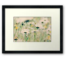 summers love~ Framed Print
