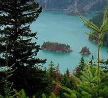 Rose Lake in the Cascade Range by © Loree McComb