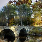 New England Stone Bridge by Monica M. Scanlan