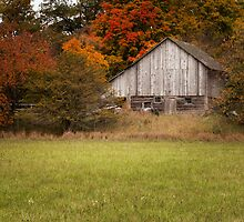 Autumn Barn by Jigsawman