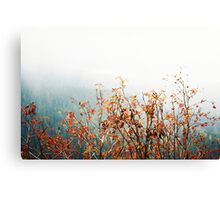 High Tatras in Fall V. Canvas Print