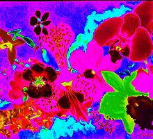 Orchid neon print by Ali Close