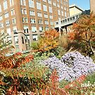 Autumn Colors on the High Line, New York City's Elevated Garden and Park by lenspiro