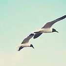 Seagulls by Libertad  Leal