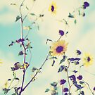 Wild Sunflowers by Libertad  Leal