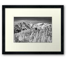 Colorado Rocky Mountain Autumn Magic Black and White Framed Print