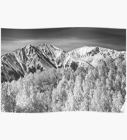 Colorado Rocky Mountain Autumn Magic Black and White Poster