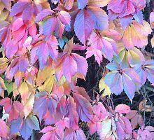 Autumn by AnneSmart