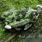 Fungus  by Jena Ferguson