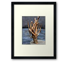 Rooted Tree Framed Print