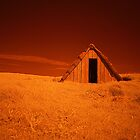 Infra Red Seaweed Hut by rennaisance