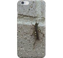 Grasshopper case iPhone Case/Skin