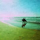 surfers by geophotographic