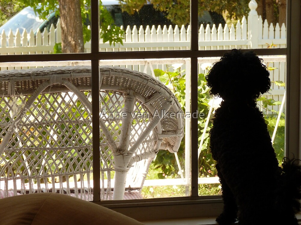 May I go out to play? by Anne van Alkemade