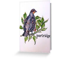 Partridge. ('A partridge in a pear tree')  Greeting Card
