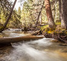Banff National Park by Ron Finkel