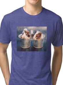 Double Delight Tri-blend T-Shirt