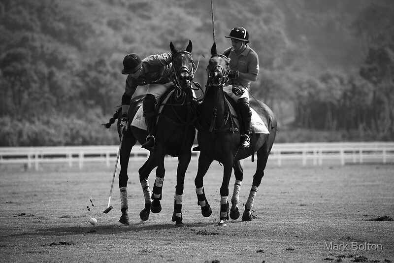 The Challenge - Shanghai Polo Gold Cup