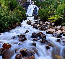 Steavenson Falls by joeferma