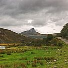 The Mad Little Road Of Sutherland by Jamie  Green
