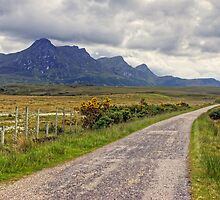 The Road By Ben Loyal by Jamie  Green