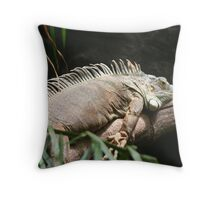 The lazy days of summer Throw Pillow