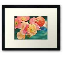 All the Colors of Sunshine Framed Print