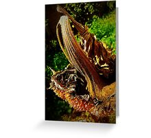 Sunflower Seedless 2 Greeting Card