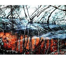 Wasteland  Photographic Print