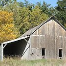 Barn and Fall Color by Jean Martin