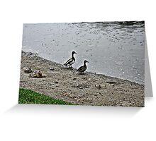Lake side Greeting Card