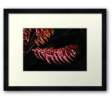 Autumn in Tuscany Framed Print