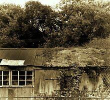 Ye Olde Barn by lynn carter