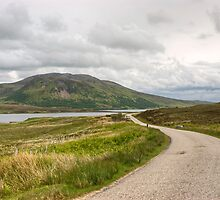 The Road From Melness by Jamie  Green