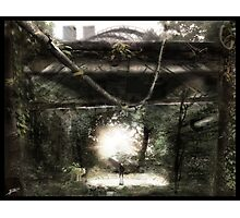 Dystopian Bridge Photographic Print