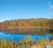 The outlet pond by Penny Rinker