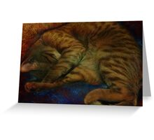 study of a sleeping cat Greeting Card