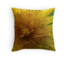 Spring's Arrival Throw Pillow