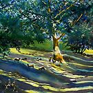 Sheep and Shade in Black Gate Wood by Glenn Marshall