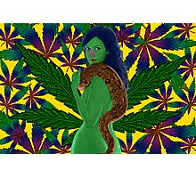 Weeds Nancy Marijuana Leaf by Culture Cloth Zinc Collection Photographic Print