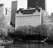The Plaza Hotel, New York  by VDLOZIMAGES